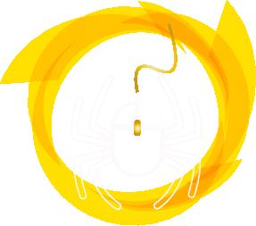 owebdesigner.com